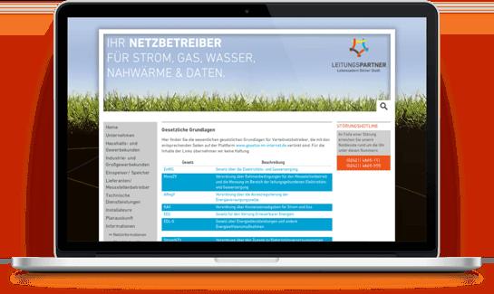 Referenzkunde Webportal Netz: Leitungsparnter